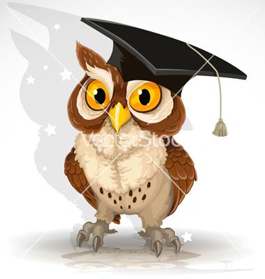 wise-owl-vector-1029749