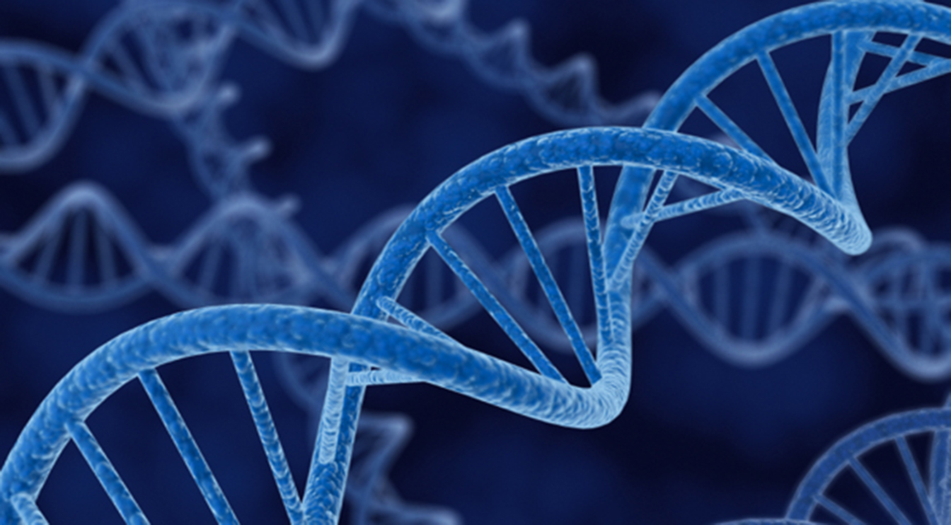 DNA mapping services post thumbnail image