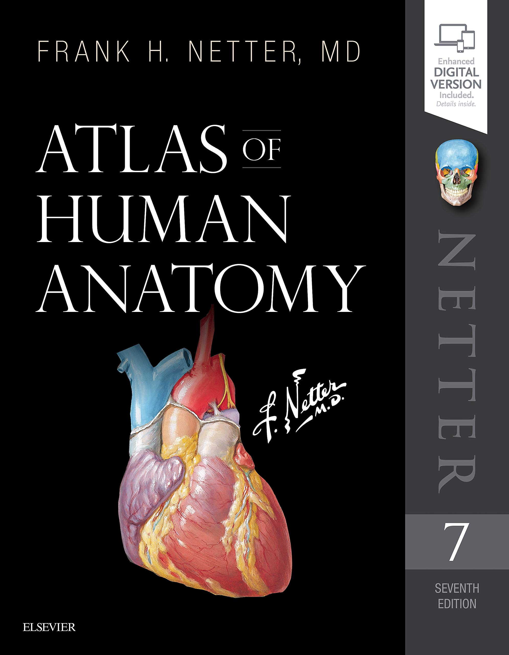 Atlas of human Anatomy post thumbnail image